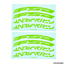 FSA GRADIENT WH STICKER Green